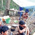 PLCN catches 10 illegal loggers in Preah Vihear