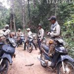 Forest Patrol Group Says Rangers Aiding Logging