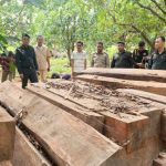 Activists bemoan the delay in Stung Treng timber crackdown