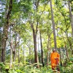 Monk, forest chief proclaims his love for wildlife, decries poachers