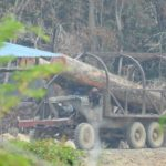 New Trails, Satellite Images Point to More Logging Inside Prey Lang