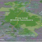 Amnesty International – Widespread illegal logging in Prey Lang
